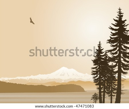 mount baker washington state