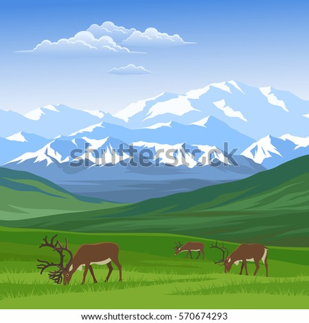 mountain landscape with