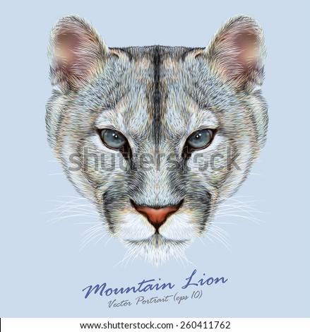 mountain lion animal cute face