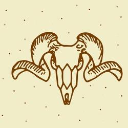 mountain ram skull in vector image
