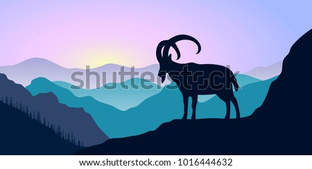 mountains  alpine ibex and