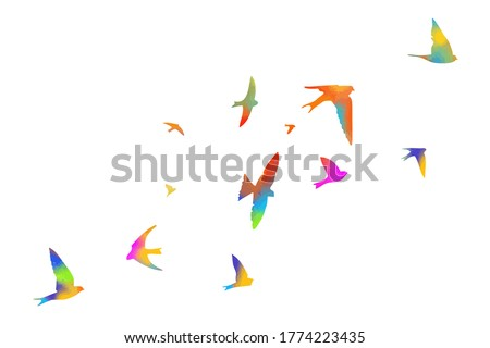multi colored swallows flying
