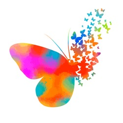 Multicolored abstraction butterfly flying apart in pieces