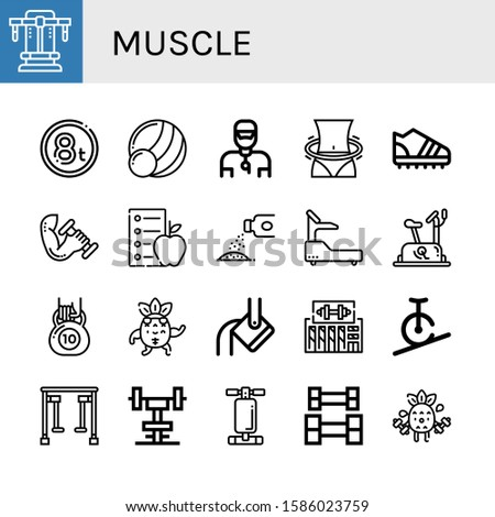 muscle icon set. Collection of Bench press, Weight, Medicine ball, Trainer, Hula hoop, Trainers, Dumbbell, Diet, Powder, Fitness, Stationary bike, Kettlebell, Strong, Heavy icons