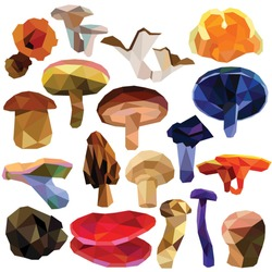 Mushroom set colorful low poly designs isolated on white background. Vector edible food illustration. Collection of fungus in a modern style.