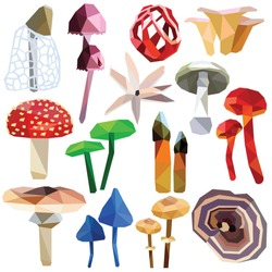 Mushroom set colorful low poly designs isolated on white background. Vector poisonous food illustration. Collection of fungus in a modern style.