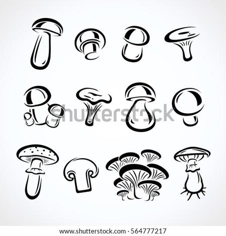 Mushroom set. Vector