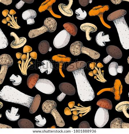 Mushrooms seamless pattern. Various mushrooms hand drawn vector illustration. Food background. Forest mushrooms. Сток-фото ©