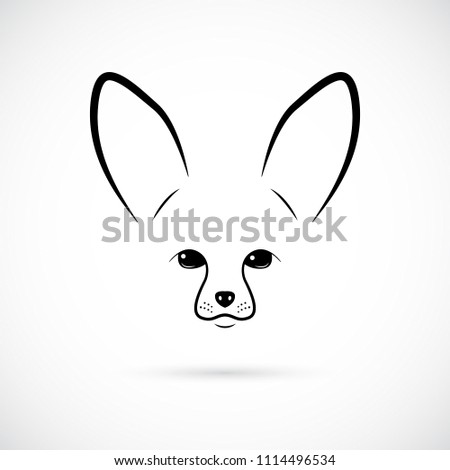 Stock Photo Muzzle of cute Fennec on white background. Line art. Minimalist icon for your design.