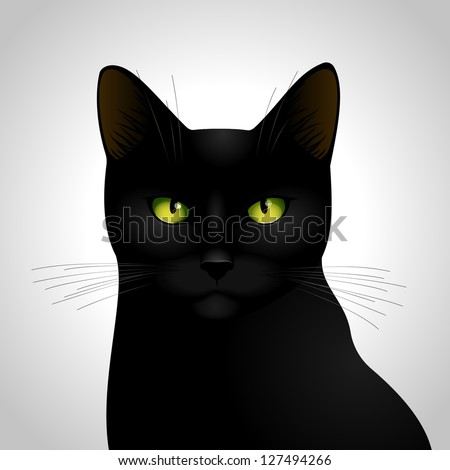 my black cat  vector