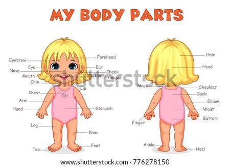 my body parts girl illustration