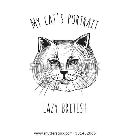 my cat's portrait  lazy british