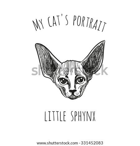 my cat's portrait  little