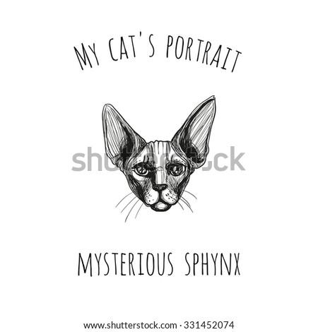 my cat's portrait  mysterious