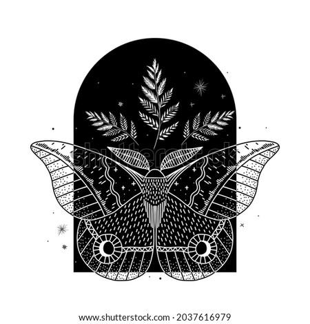 mystical illustration of a