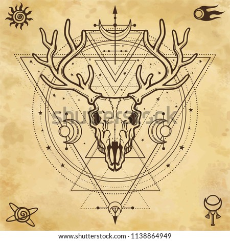 Mystical image of the  skull a horned deer, sacred geometry, symbols of the moon. Background - imitation of old paper. Esoteric, paganism, occultism.Vector illustration. Print, potser, t-shirt, card