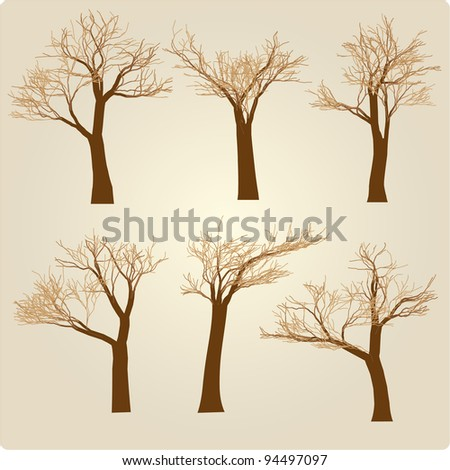 Naked set of trees in a winter windy appearance