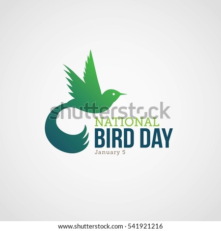 national bird day vector