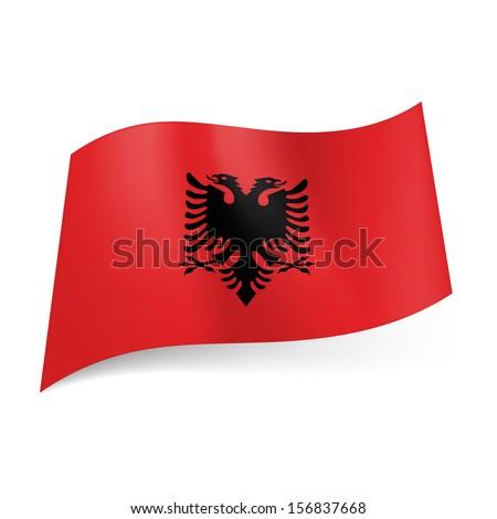 Eagle Logo Red Eagle on Red Background