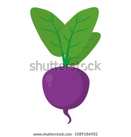 natural beet with leaves organic vegetable