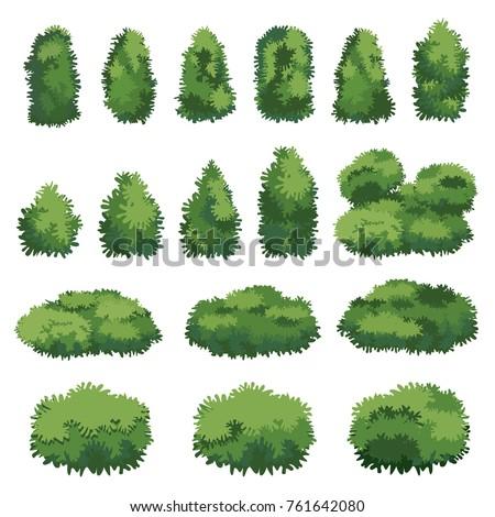 Natural bush vector