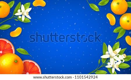 natural citrus fruit background