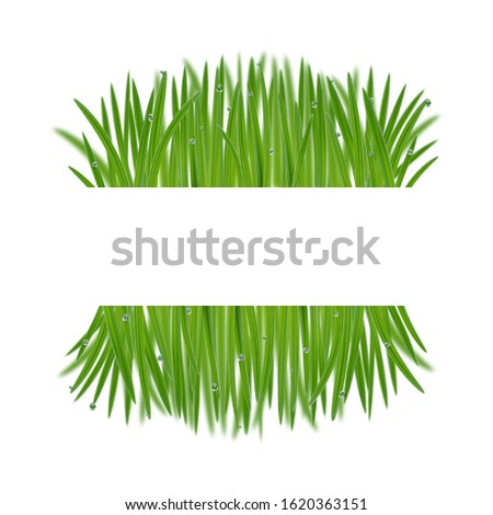 natural frame from grass with
