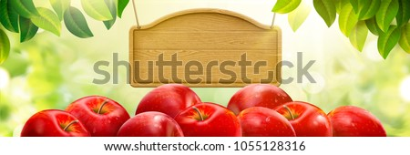 Natural fresh apple background, delicious fruits with blank wood plate isolated on bokeh green background, 3d illustration