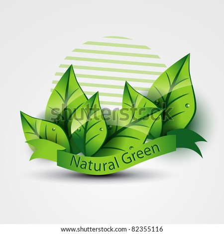 natural green ecofriendly vector with leafs
