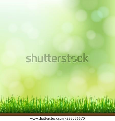 natural green grass background