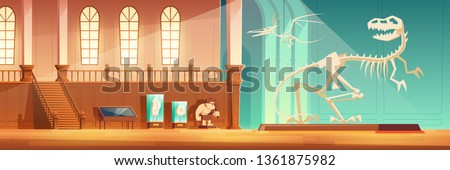 Natural history museum exhibition hall with exhibits cartoon vector. T-rex and pterodactyl dinosaurs skeletons on pedestal, hanging on rope, stone age hunter dummy, fossils in glass cases illustration