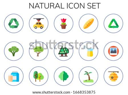 natural icon set 15 flat