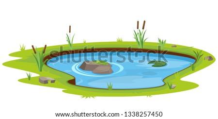 Natural pond outdoor scene