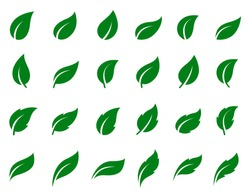 Natural set of abstract green leaf icons on white background. Collection of simple vector silhouettes.