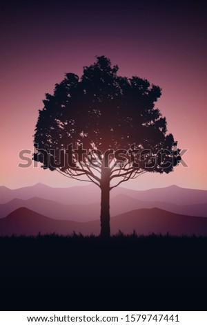 natural tree forest mountains