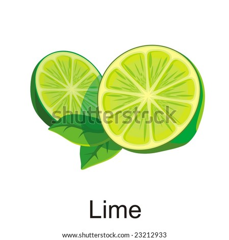 Natural Vector lime illustration isolated object