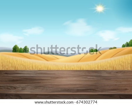 natural wheat filed background