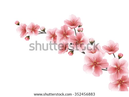 Sakura Flowers Border Template - Download Free Vector Art, Stock ...
