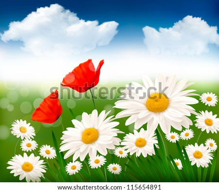 Nature background with colorful flowers and blue sky. Vector illustration.