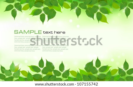 Nature background with green fresh leaves . Vector illustration. stock photo