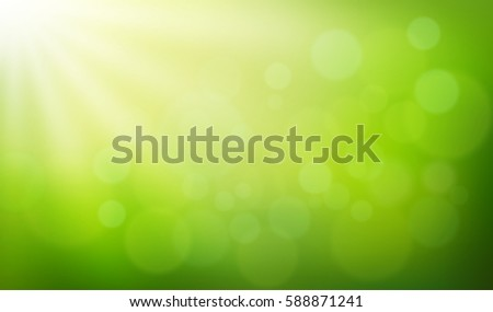 nature blurred background with