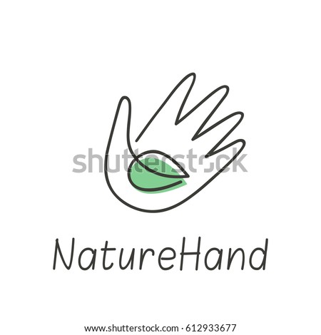 Nature concept with green leaf and human hand.