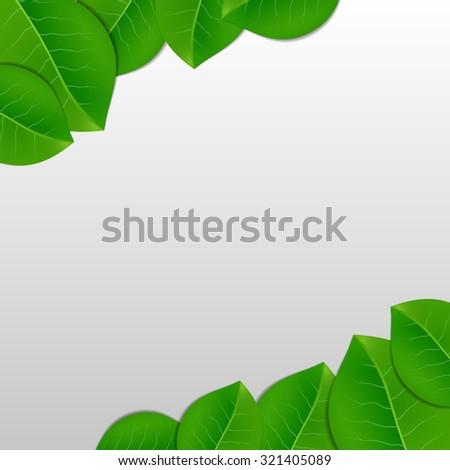 nature green leaves vector
