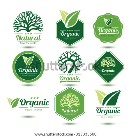 Nature labels and badges with green tree and leave, vector illustration