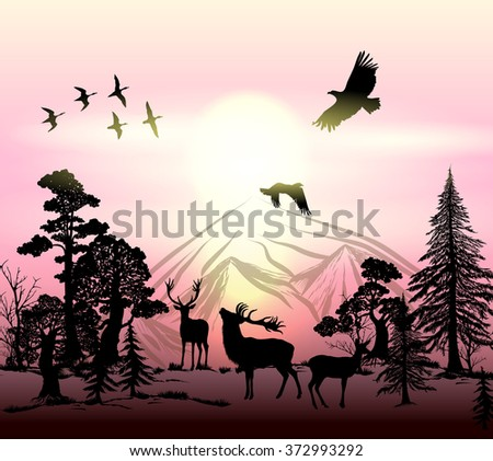 nature outdoor vector