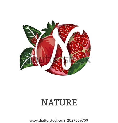 nature pomegranate paper letter N. Whole pomegranate with half, leaves. Vector illustration. Foto stock ©