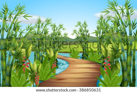 nature scene with bamboos along