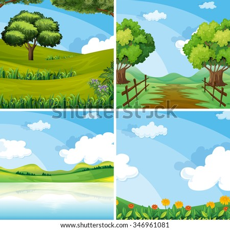 nature scene with field and