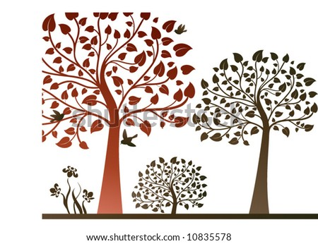 nature scene with trees