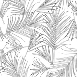Nature seamless pattern. Hand drawn tropical summer background: black white palm tree leaves, line art background.